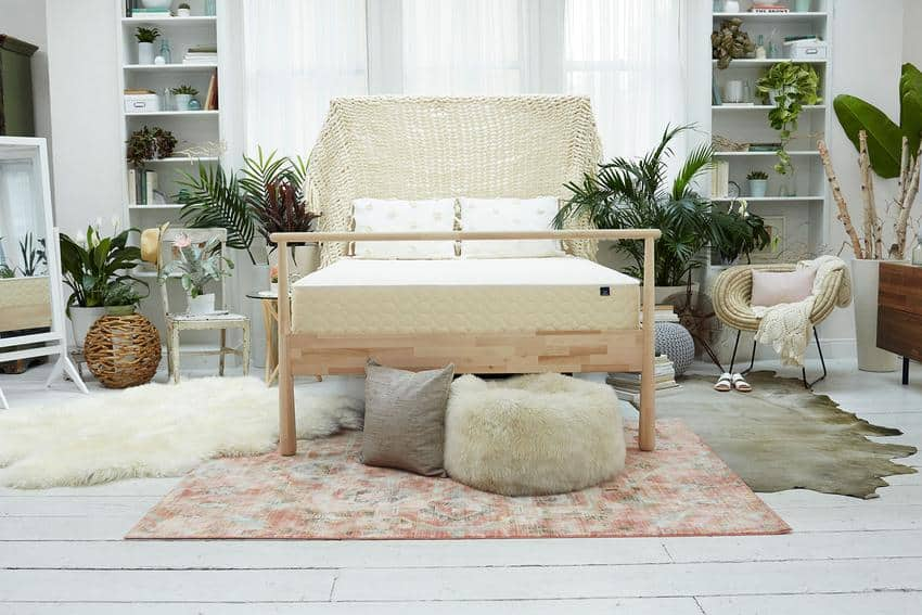 Winkbed EcoCloud